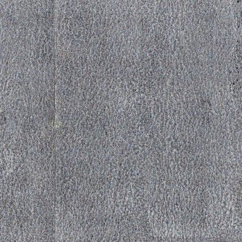 1089_xstone_silver_smooth_concrete_cameleon